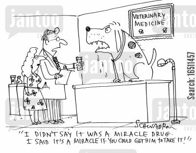 'I didn't say it was a miracle drug. I said it's a miracle if you could get him to take it!'